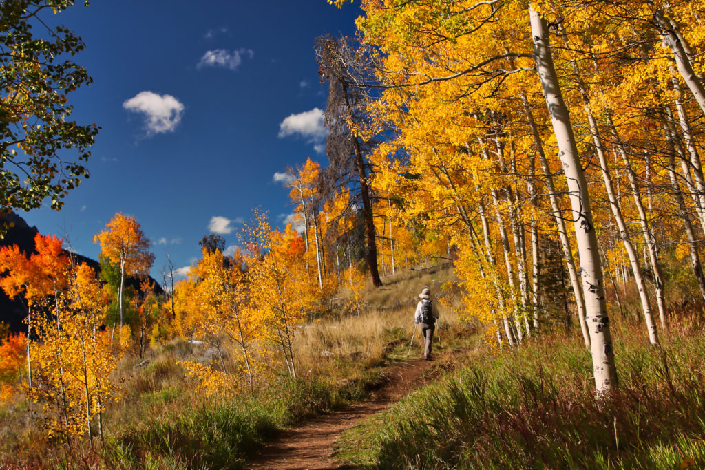 Aspen Snowmass Guided Hiking Adventures: Aspen Colors
